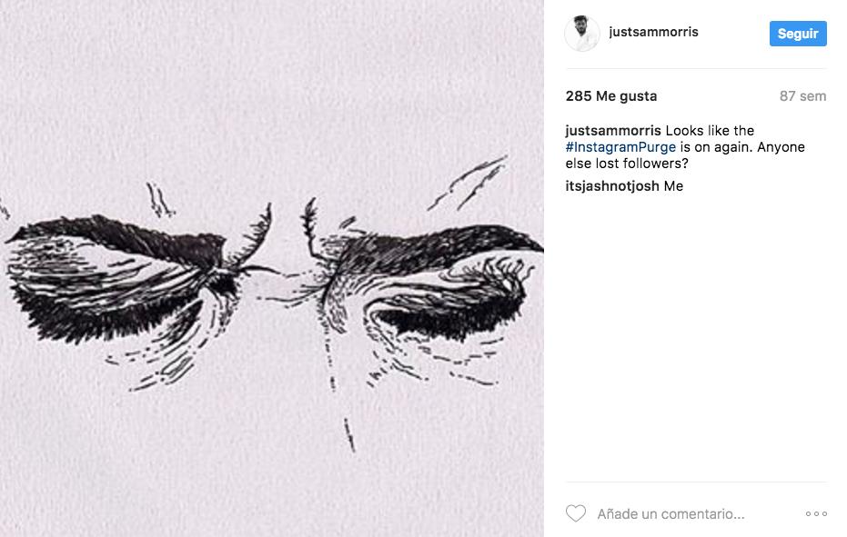Purga Instagram