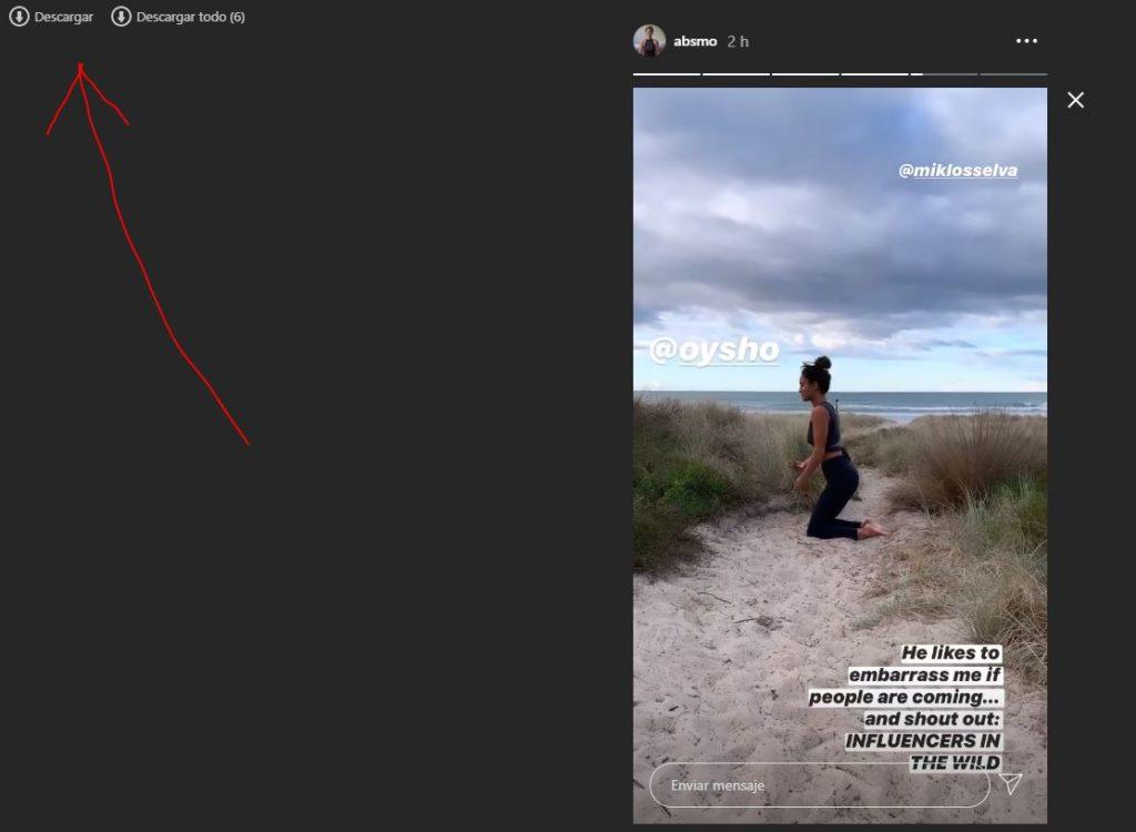 Descargar Directs Instagram