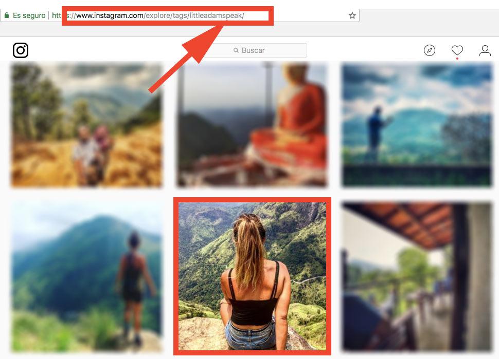 Buscar Instagram